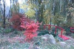 Ogród stylizowany na japoński - jesienią, 28.10.2018 r.