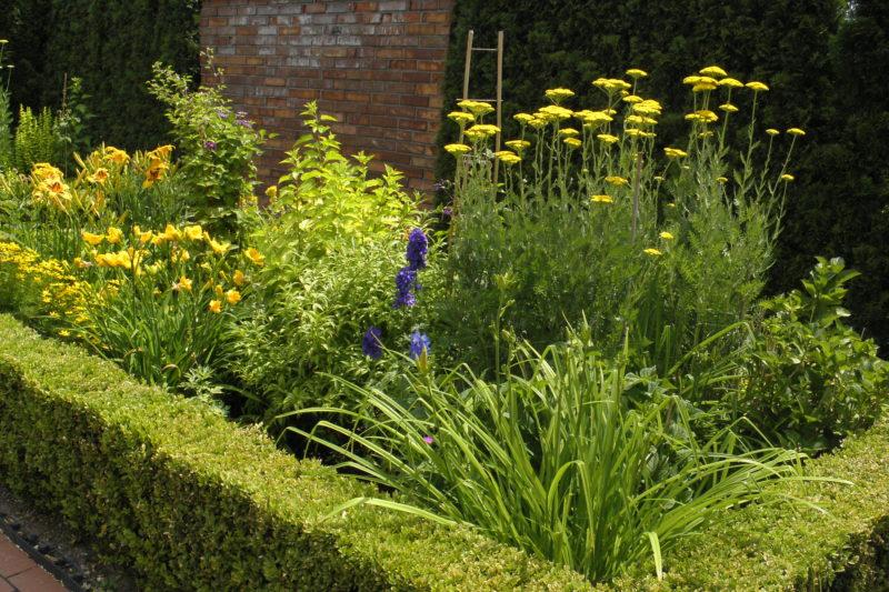 Ogrody renesansowe